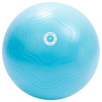 Pure2Improve Μπάλα Γυμναστικής Γαλάζια 65 εκ.