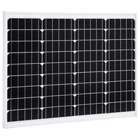 vidaXL Ηλιακό Πάνελ Μονοκρυσταλλικό 50 W Αλουμίνιο / Γυαλί Ασφαλείας