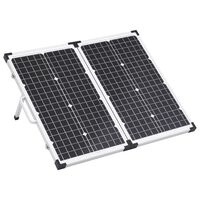 vidaXL Ηλιακή Βαλίτσα με Φωτοβολταϊκά Πάνελ 60 W 12 V