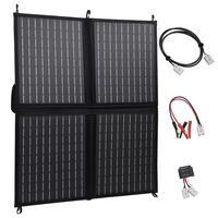vidaXL Ηλιακός Φορτιστής με Πάνελ Πτυσσόμενος 80 W 12 V