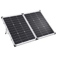 vidaXL Ηλιακή Βαλίτσα με Φωτοβολταϊκά Πάνελ 120 W 12 V
