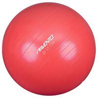 Avento Μπάλα Γυμναστικής Ροζ Διαμέτρου 55 εκ.
